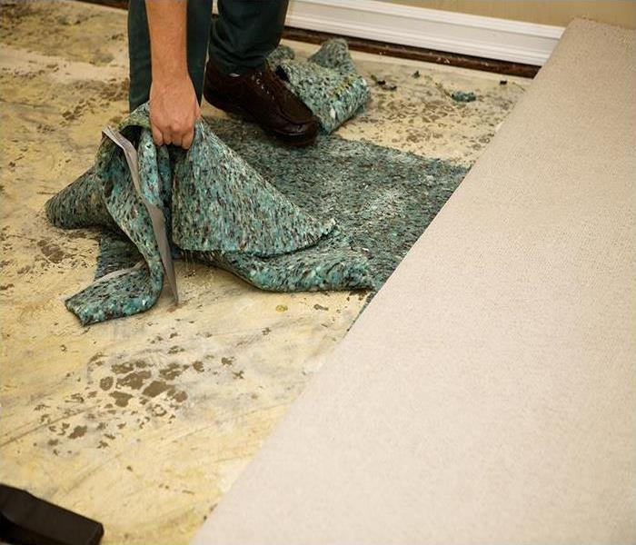 Water Damage How We Restore Your Water Damaged Carpet In Your Lancaster Home