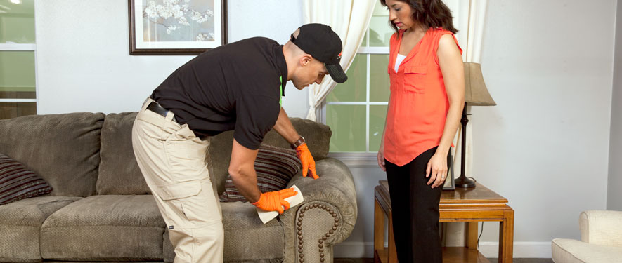 Fitchburg, MA carpet upholstery cleaning
