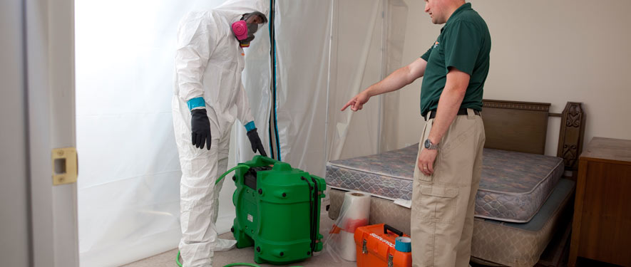 Fitchburg, MA mold removal process